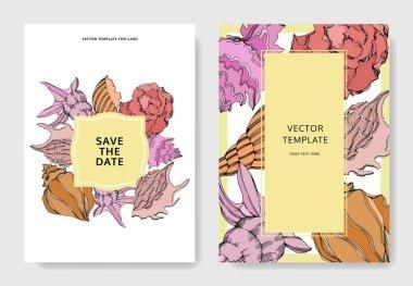 Vector Summer beach seashell tropical elements. Template cards. clip art vector