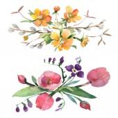 Csokor virágos botanikus virágok. Akvarell háttér illusztráció meg. Lehántott csokrok illusztrációs elem.
