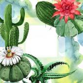 Green cactus floral botanical flower. Watercolor background illustration set. Frame border ornament square.