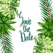Palm beach tree leaves jungle botanical. Watercolor background illustration set. Frame border ornament square.