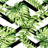 Palm Beach fa elhagyja dzsungel botanikus. Akvarell háttér illusztráció meg. Folytonos háttérmintázat.