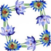 Blue lotus floral botanical flowers. Watercolor background illustration set. Frame border ornament square.
