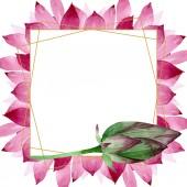 Fényképek Pink lótusz virágos botanikai virágok. Akvarell háttér illusztráció meg. Keretszegély Dísz tér.