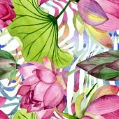 Pink lótusz virágos botanikai virágok. Akvarell háttér illusztráció meg. Folytonos háttérmintázat.