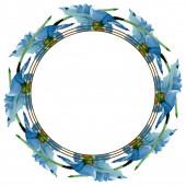 Modrý mák květinové botanické květiny. Sada akvarel pozadí obrázku. Frame hranice ozdoba náměstí.