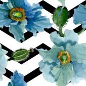Kék pipacs virágos botanikai virágok. Akvarell háttér illusztráció meg. Folytonos háttérmintázat.