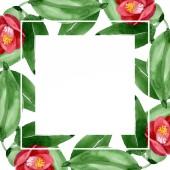 Red camelia floral botanical flower. Watercolor background illustration set. Frame border ornament square.