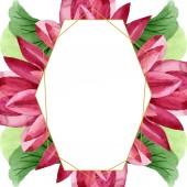 Red lotus floral botanical flower. Watercolor background illustration set. Frame border ornament square.