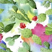 Zelené kaktus květinové botanické květy. Vodný obrázek pozadí-barevný. Bezespání vzorek pozadí.