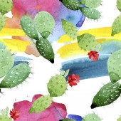 Green cactus floral botanical flowers. Watercolor background illustration set. Seamless background pattern.