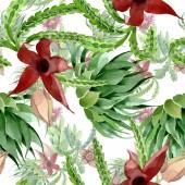 Zelený kaktus květinové botanické květy. Vodný obrázek pozadí-barevný. Bezespání vzorek pozadí.