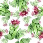 Fényképek Zöld kaktusz virágos botanikus virág. Akvarell háttér illusztráció meg. Folytonos háttérmintázat.