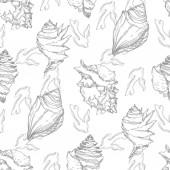 Fényképek Nyári strand Seashell trópusi elemeket. Fekete-fehér vésett tinta Art. Folytonos háttérmintázat.