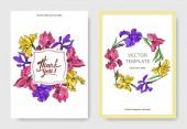 Iris floral botanical flowers. Black and white engraved ink art. Wedding background card floral decorative border.