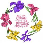 Írisz virágos botanikus virágok. Akvarell háttér illusztráció meg. Keretszegély Dísz tér.