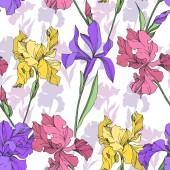 Iris květinové botanické květiny. Černé a bílé ryté inkoustem. Bezespání vzorek pozadí.