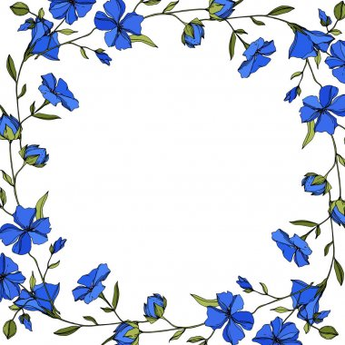 Vector Flax floral botanical flowers. Wild spring leaf wildflower isolated. Blue and green engraved ink art. Frame border ornament square on white background. stock vector