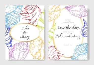 Yaz plaj deniz kabuğu tropikal unsurlar. Oyulmuş mürekkep sanatı. Düğün arka plan kartı dekoratif sınır.