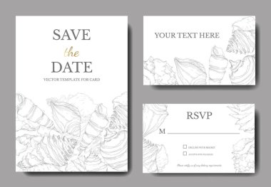 Summer beach seashell tropical elements. Black and white engraved ink art. Wedding background card decorative border. Thank you, rsvp, invitation elegant card illustration graphic set banner. clip art vector