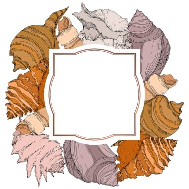 Summer beach seashell tropical elements. Black and white engraved ink art. Frame border ornament square on white backgroud. clip art vector