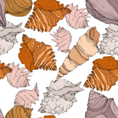 Summer beach seashell tropical elements. Black and white engraved ink art. Seamless background pattern. Fabric wallpaper print texture on white background. clip art vector