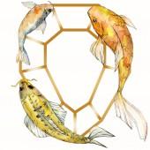 Fotografie Aquarell aquatische Unterwasser-tropische Fische Set. Rotes Meer und exotische Fische darin: Goldfische. Rahmenrandquadrat.