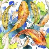 Fotografie Aquarell aquatische Unterwasser bunte tropische Fische Set. Rotes Meer und exotische Fische im Inneren: Goldfische.
