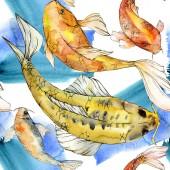 Aquarell aquatische Unterwasser bunte tropische Fische Set. Rotes Meer und exotische Fische im Inneren: Goldfische.