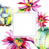 Zöld kaktusz. Virágos botanikus virág. Keretszegély Dísz tér. Akvarell háttérillusztráció-készlet.