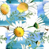 Chamomile floral botanical flower. Wild spring leaf isolated. Watercolor illustration set. Watercolour drawing fashion aquarelle. Seamless background pattern. Fabric wallpaper print texture.