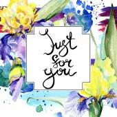 Purple yellow iris flower. Watercolor background illustration set. Watercolour drawing aquarelle. Frame border square. [text] handwriting monogram calligraphy.