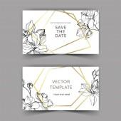 Vetoro orchideje. Ryté inkoustové kresby. Svatební hranice. Děkujeme vám, RSVP, elegantní ilustrace.