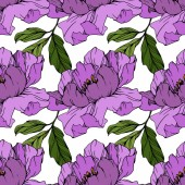 Vektor lila pünkösdi rózsa virág. Gravírozott tinta művészet. Folytonos háttérmintázat. Szövet tapéta nyomtatási textúra.