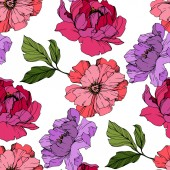 Fényképek Vector Pink és lila pünkösdi rózsa virág. Gravírozott tinta művészet. Folytonos háttérmintázat. Szövet tapéta nyomtatási textúra.