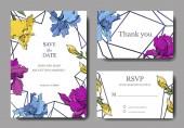 Vektorová modrá, fialová a žlutá Iris Botanická květina. Ryté inkoustové kresby. Svatební karta, ozdobný okraj. Děkujeme vám, RSVP, elegantní karta ilustrační nápis grafika.