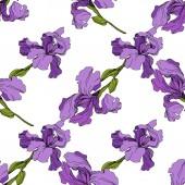 Fotografie Vektor Iris blumen botanische Blume. Nahtloses Hintergrundmuster. Stoff Tapete Druck Textur.