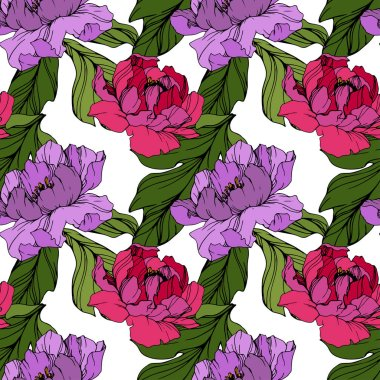 Vector Pink and purple peony. Floral botanical flower. Wild spring leaf wildflower isolated. Engraved ink art. Seamless background pattern. Fabric wallpaper print texture. clip art vector
