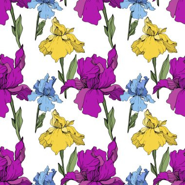 Vector Purple, yellow and blue iris. Floral botanical flower. Wild spring leaf wildflower isolated. Engraved ink art. Seamless background pattern. Fabric wallpaper print texture. stock vector