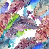 Színes madár toll a szárny elszigetelt. Akvarell háttér illusztráció meg. Folytonos háttérmintázat.