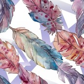 Colorful bird feather from wing isolated. Watercolor background illustration set. Seamless background pattern.