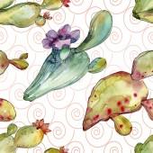 Fényképek Zöld kaktusz virágos botanikus virágok. Akvarell háttér illusztráció meg. Folytonos háttérmintázat.