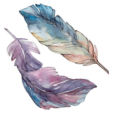 Colorful bird feather from wing isolated. Watercolor background illustration set. Watercolour drawing fashion aquarelle isolated. Isolated feathers illustration element. stock vector