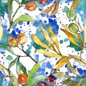 Fotografie Olivová složka s černým a zeleným ovocem. Vodný obrázek pozadí-barevný. Bezespání vzorek pozadí.