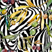 Olive ág, fekete és zöld gyümölcsök. Akvarell háttér illusztráció meg. Folytonos háttérmintázat.