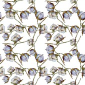 White cotton floral botanical flowers. Watercolor illustration set. Seamless background pattern. Wallpaper print texture.