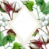 Fényképek Fehér pamut virágos botanikus virág. Vad tavaszi levél vadvirág elszigetelt. Akvarell háttér illusztráció meg. Akvarell rajz divat Aquarelle. Keretszegély Dísz tér.
