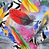 Barevné ptačí pero z odletu. Akvarel na kreslicím módu. Textura pro tisk tapety.