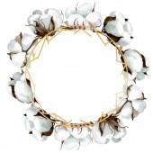 Fotografie Botanische Blumen aus weißer Baumwolle. Aquarell Hintergrundillustration Set. Rahmen Rand Ornament Quadrat.