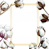 Bílé bavlněné květinové botanické květy. Vodný obrázek pozadí-barevný. Orámovaná hranatá hranice.