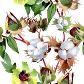 Pamut virágos botanikus virágok. Vad tavaszi levél vadvirág. Akvarell illusztráció meg. Akvarell rajz divat Aquarelle. Folytonos háttérmintázat. Szövet tapéta nyomtatási textúra.
